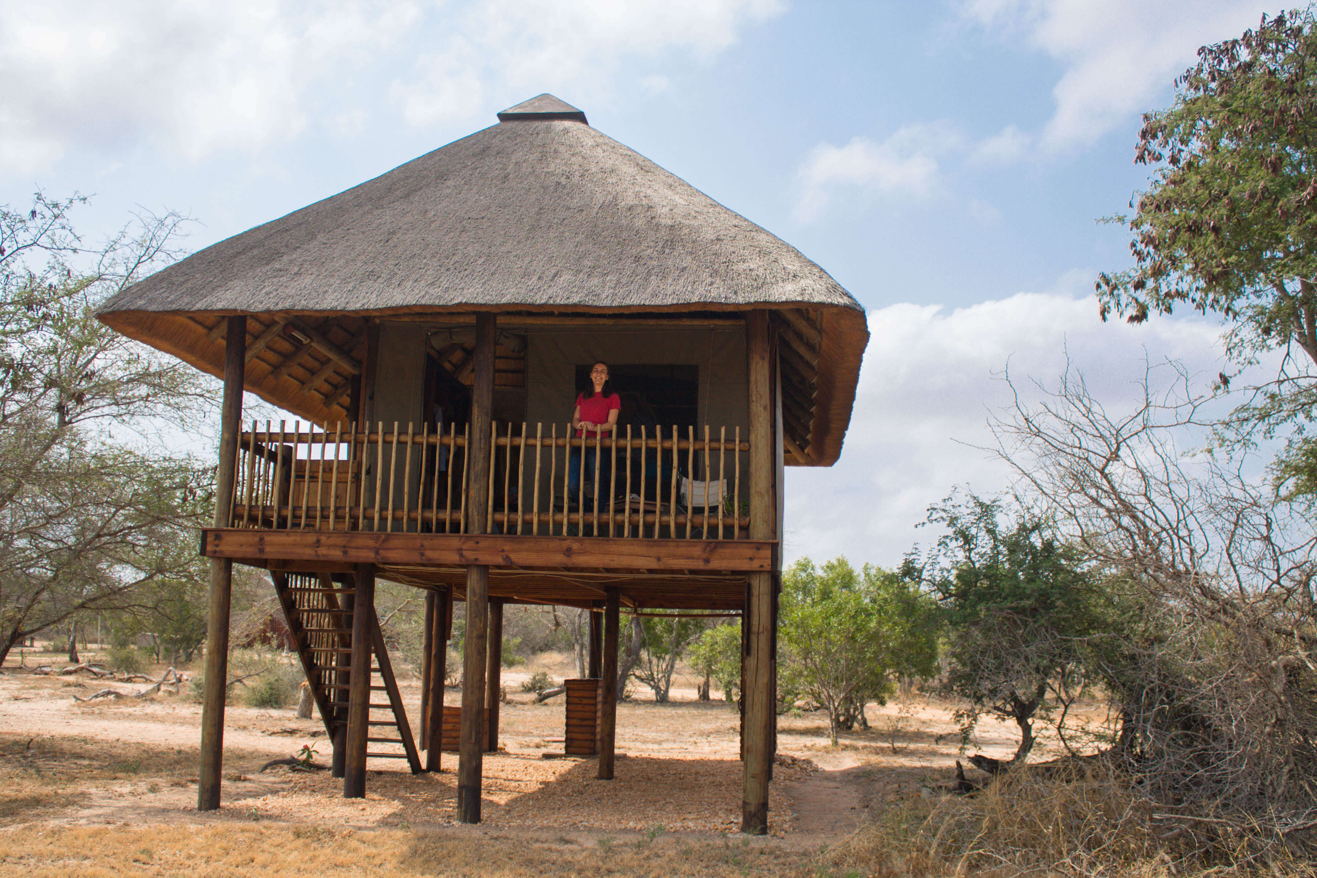 Sleeping in a treehouse in the Kruger NAtional Park, Souh Africa. Nthambo Tree Camp is located on the private concession of Klaserie