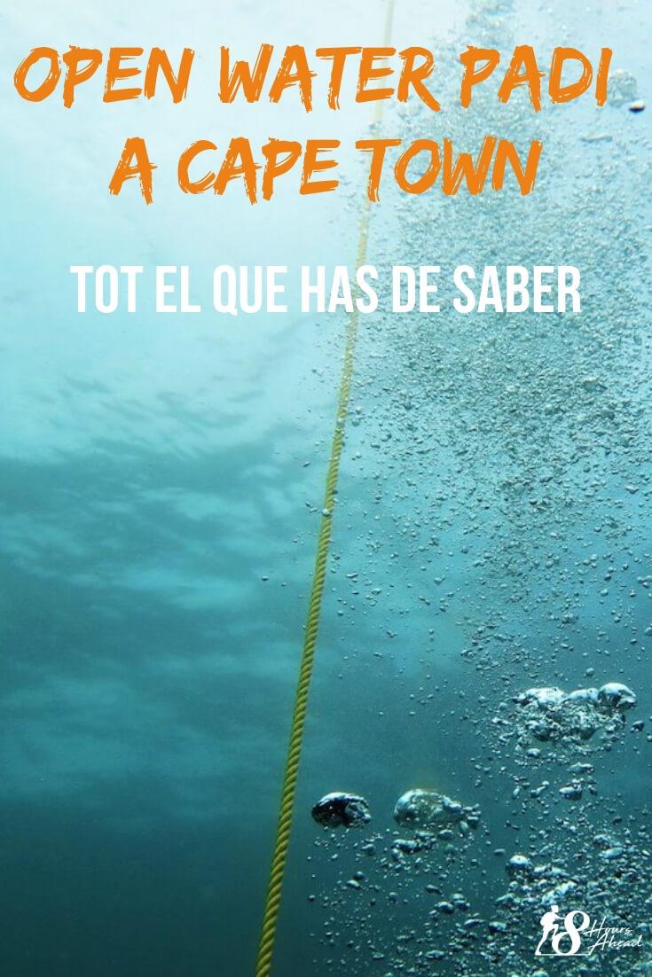 Certificat Open Water a Cape Town: tot el que has de saber