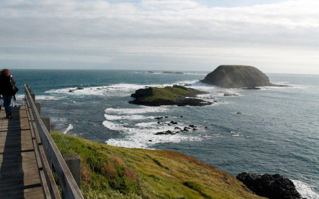 Excursió d'un dia a Phillip Island