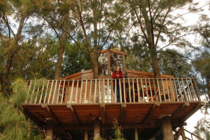 Dormint a una casa als arbres a Vindoux Guest Farm