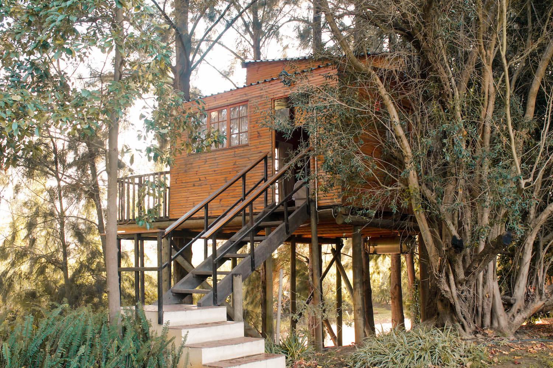Casa als arbres de Vindoux Guest Farm