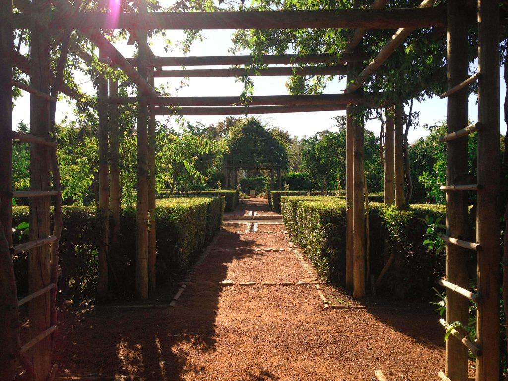 Jardins a Babylonstoren