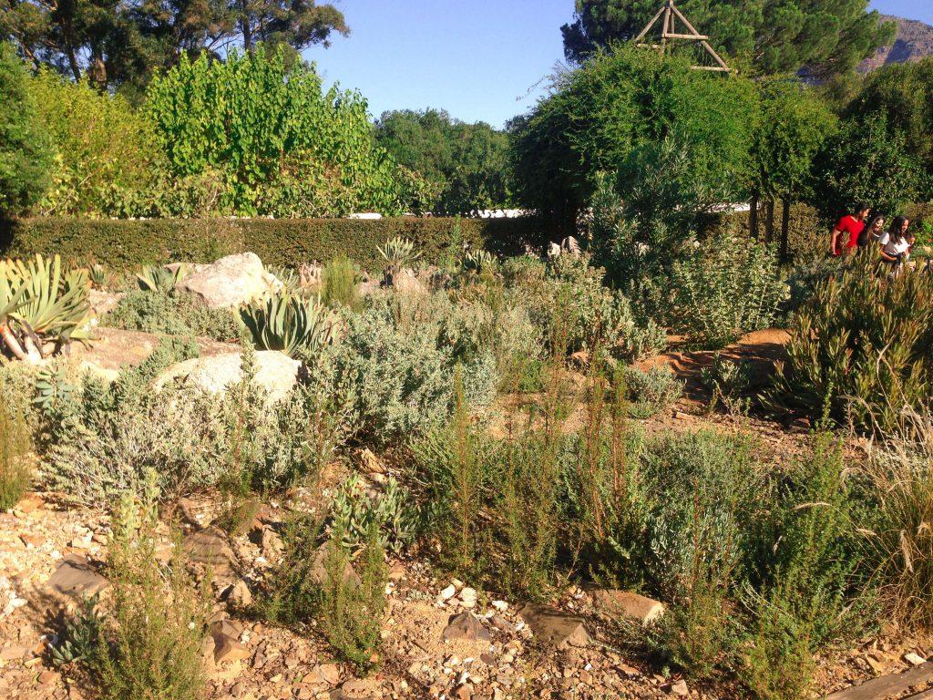 els jardins de Babylonstoren
