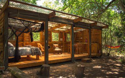 Dormint al Platbos Forest: Bush Buck Suite