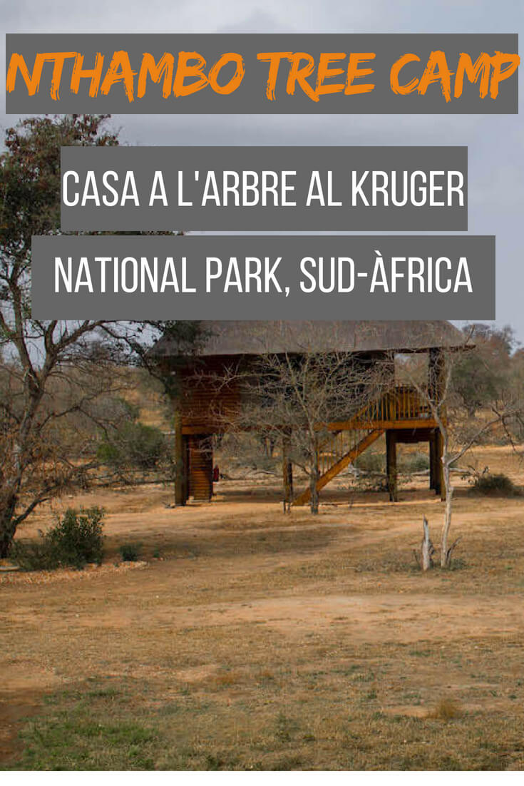 Nthambo tree camp, casa a l'arbre al Kruger National Park
