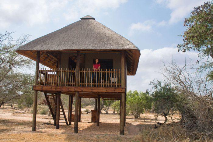 Ressenya d'Nthambo tree camp: casa als arbres al parc nacional Kruger