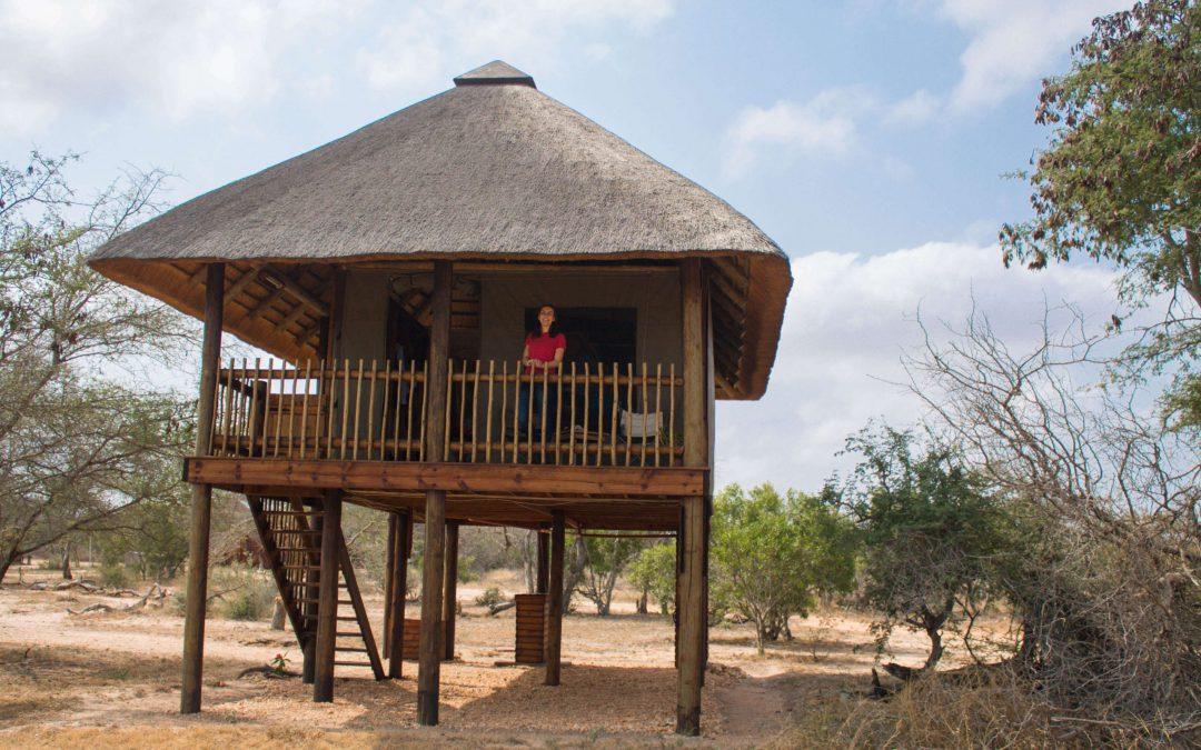 http://im8hoursahead.com/perfect-tree-house-vindoux-guest-farm/