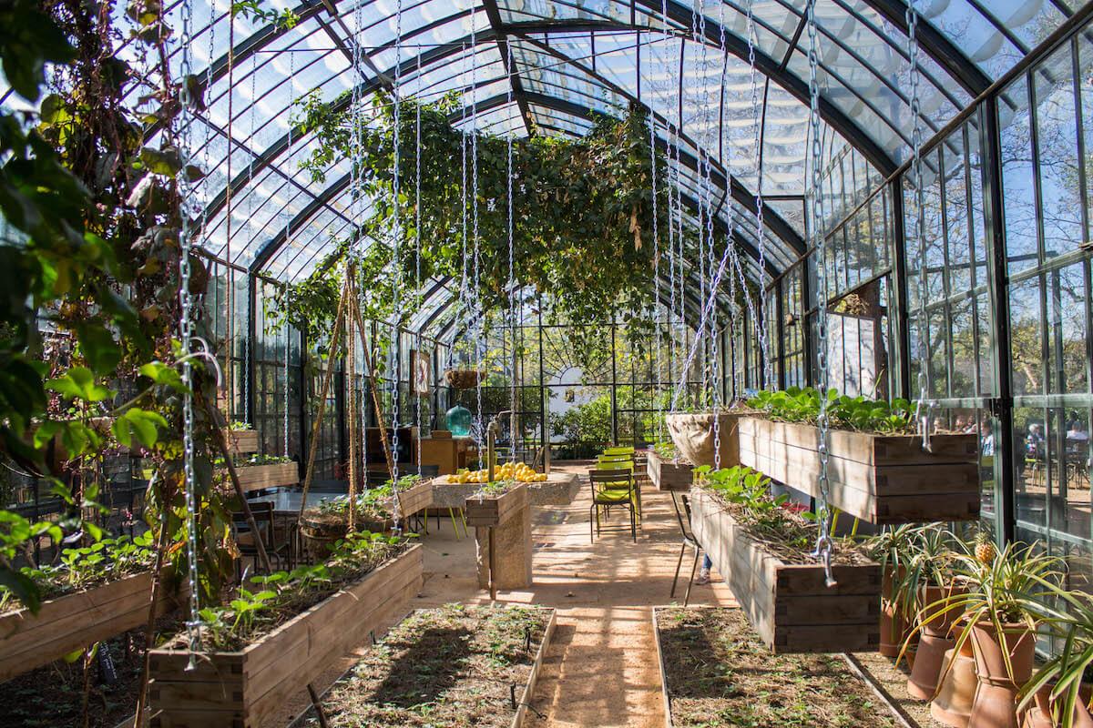Més de 10 coses increïbles per fer a Cape Town: Winelands