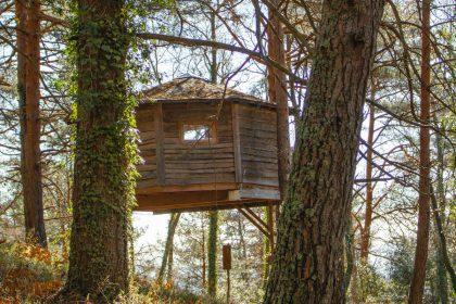 Cabans als arbres a Catalunya