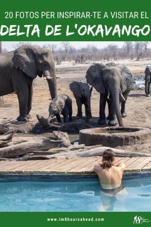 20 fotos del Delta de l'Okavango per inspirar-te a visitar