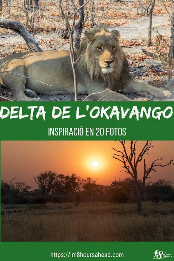 Delta de l'Okavango en 20 fotos