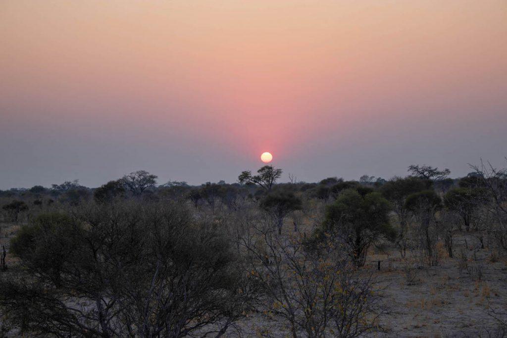 Sortides de sol al Delta de l'Okavango