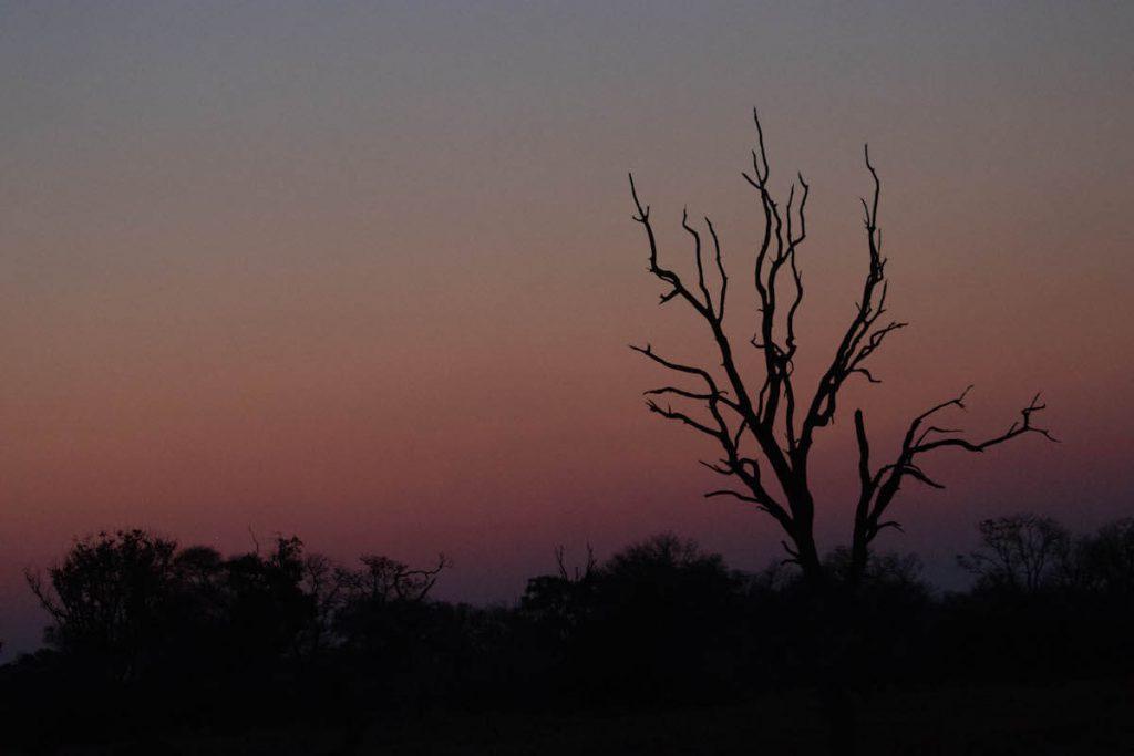 postes de sol al Delta de l'Okavango