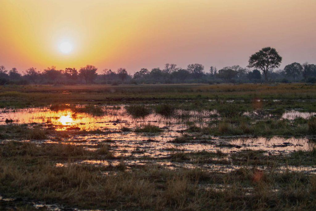 20 fotos per inspirar-te a visitar el Delta de l'Okavango a Botsuana
