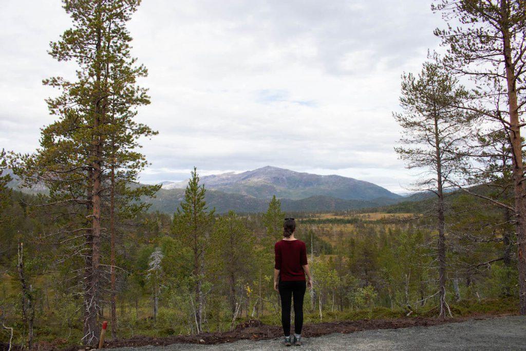Què fer a Senja: parc nacional Anderalen