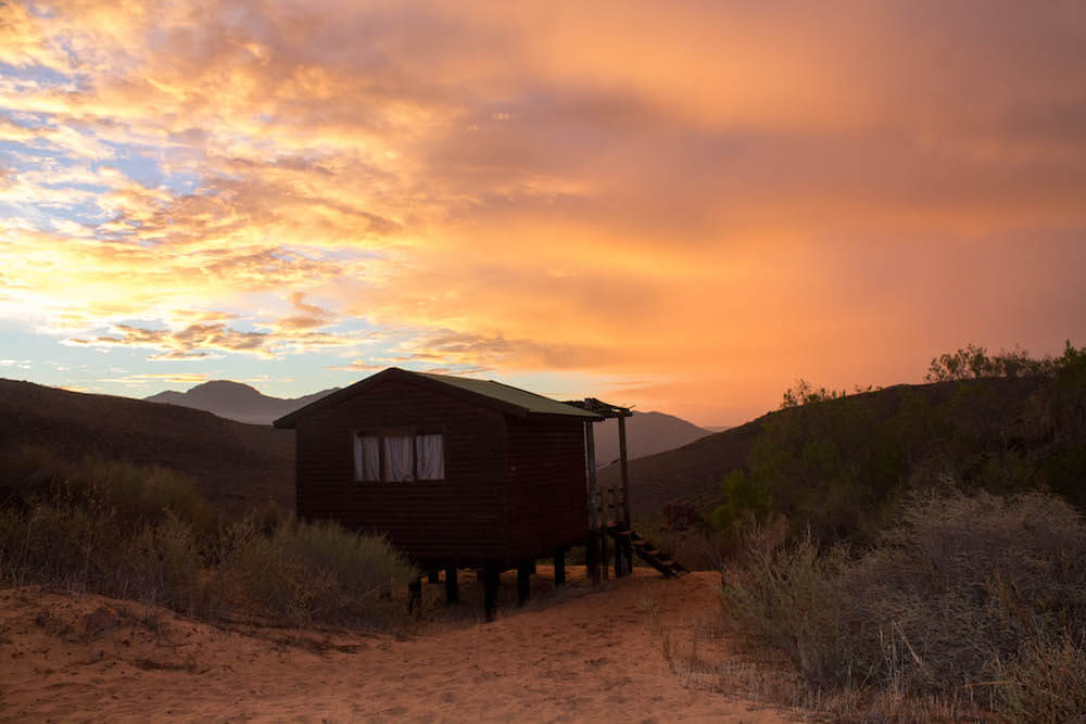 Els allotjaments més unics del Western Cape - Gecko Creek