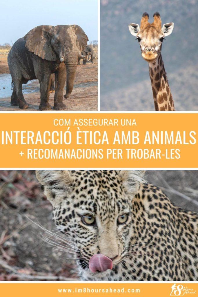 com assegurar que la teva interacció amb animals salvatges és ètica i recomanacions
