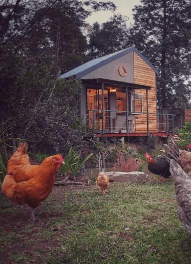 els millors Airbnbs prop de Cape Town, Sud-Àfrica: the nest