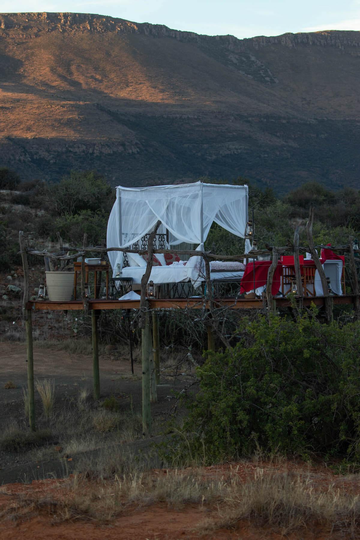 Dormint sota les estrelles: Star Bed al safari de Samara Game Reserve
