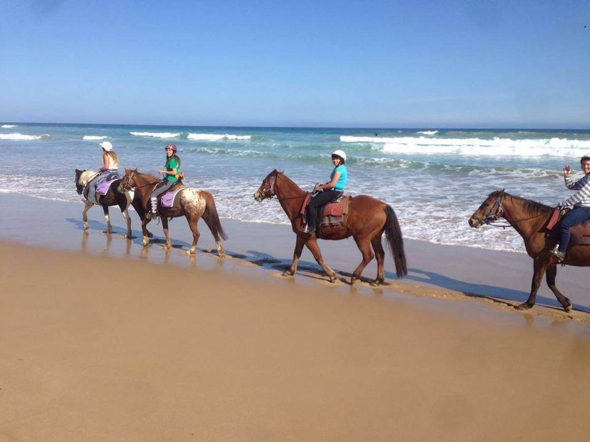 cantering on the beach