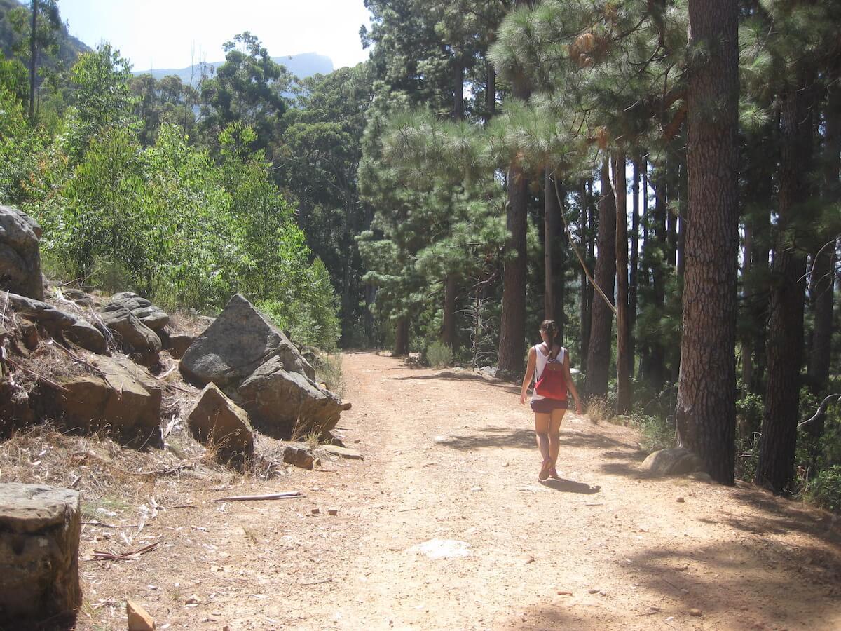Constantia Nek hike