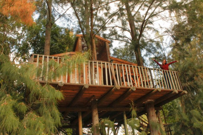 The perfect tree house weekend at Vindoux Guest Farm