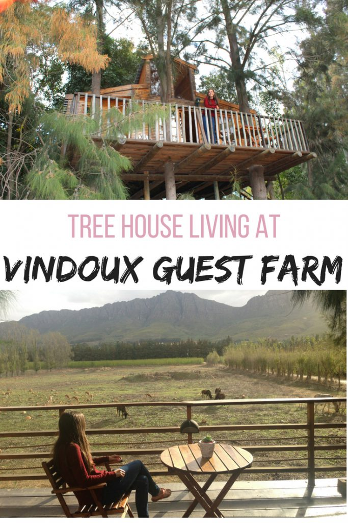 Tree house living at Vindoux Guest Farm, South Africa