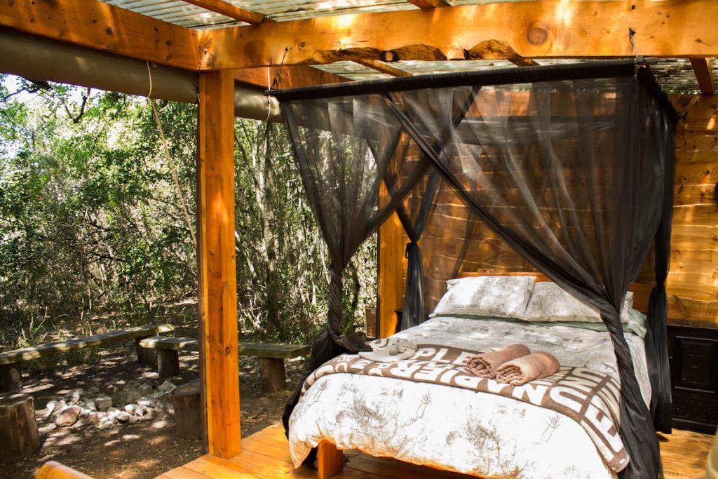 Platbos Forest Bush Buck Suite3