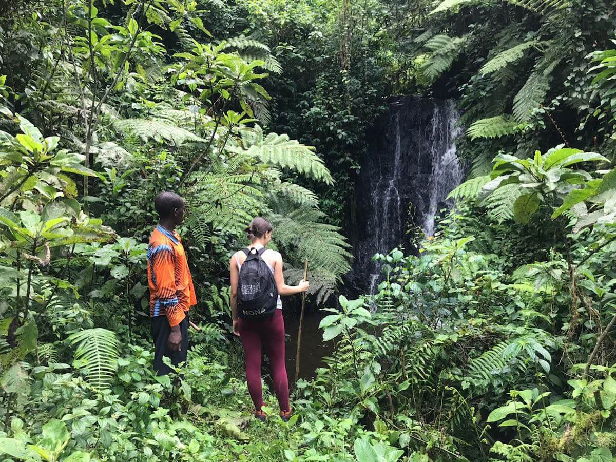 Bwindi waterfall hike