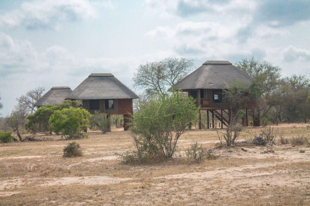 Nthambo Tree Camp - Klaserie Nature Reserve