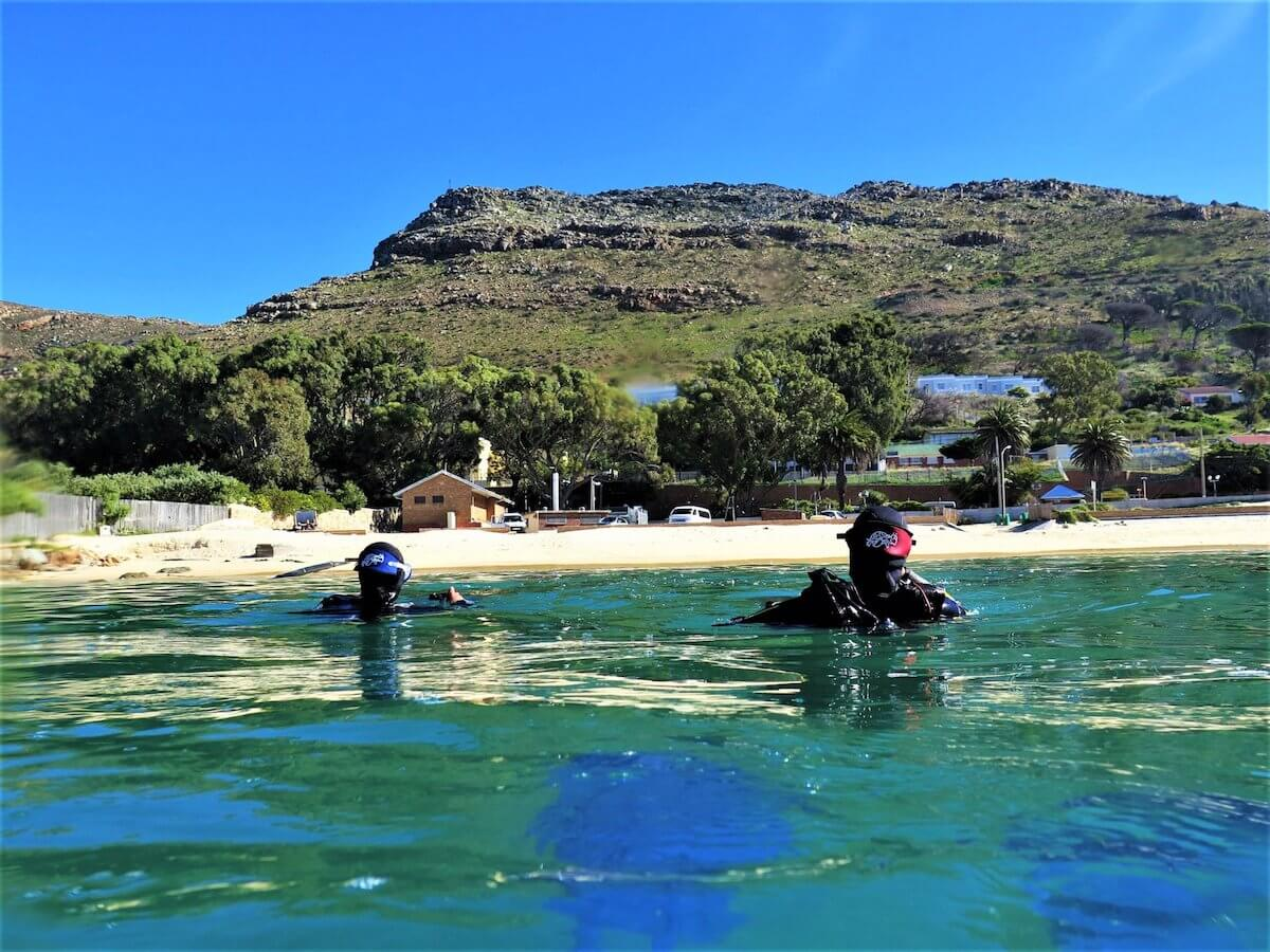 Open Water Certification in Cape Town: everything you need to know
