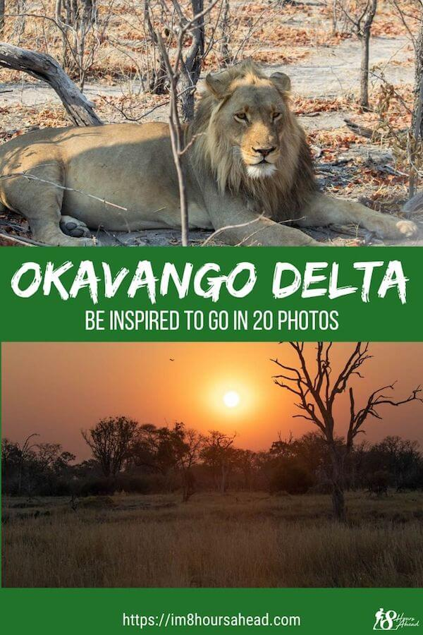 Be inspired by the Okavango Delta in just 20 photos