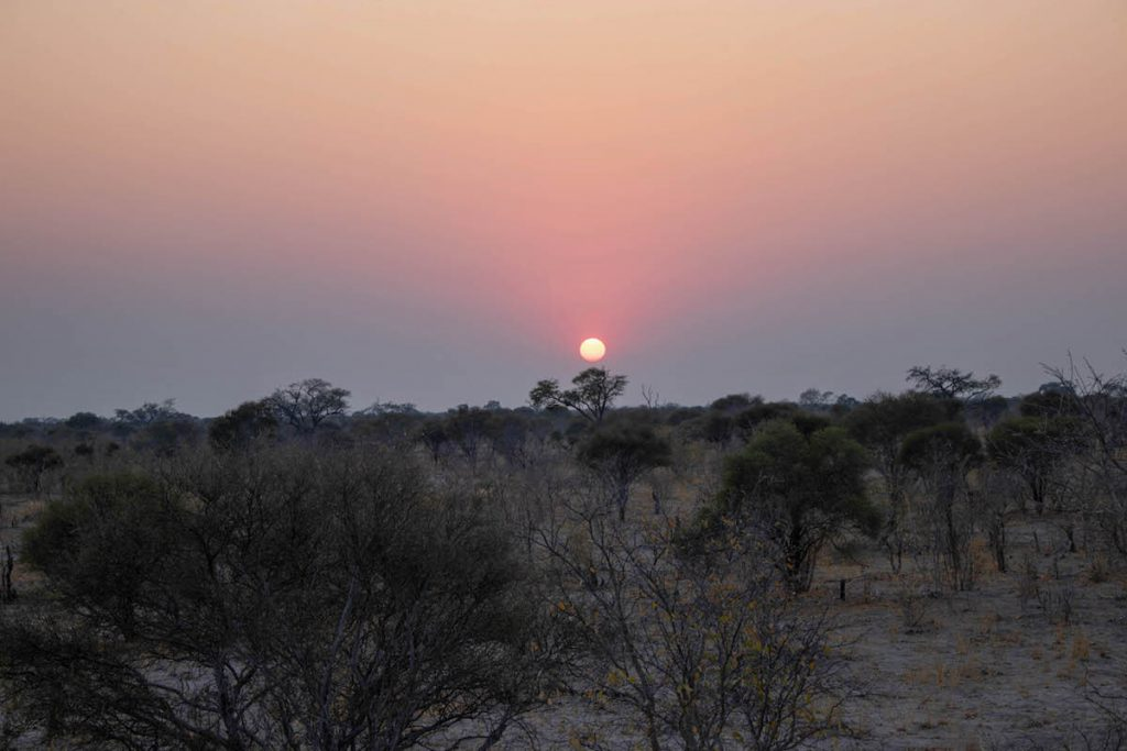 Sunrise over the Okavango Delta