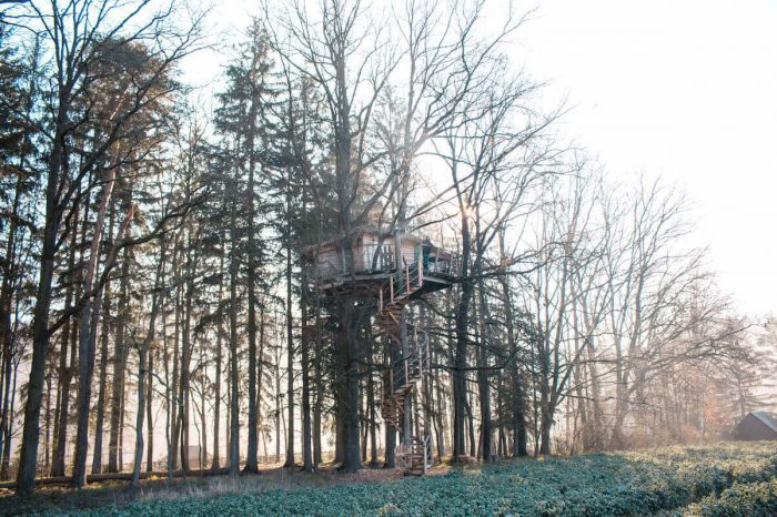 Staying high up in a treehouse near Prague: Resort Green Valley