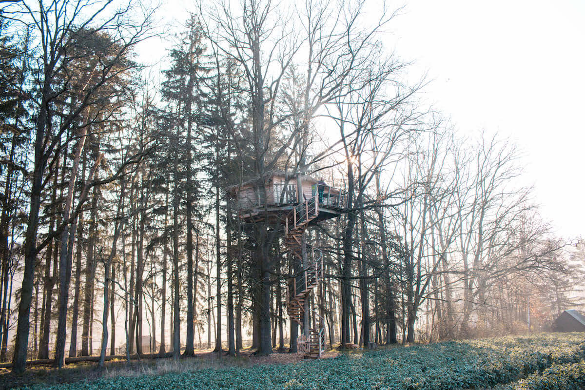 Sleeping high up in a treehouse near Prague: Resort Green Valley