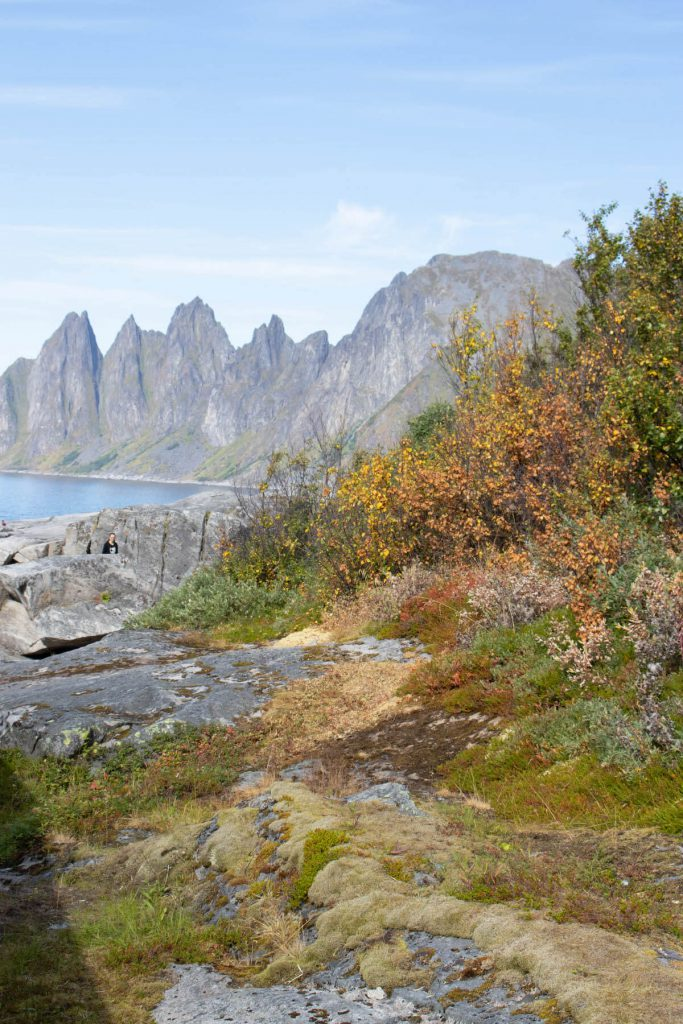 Things to do in Senja: Ersfjorden