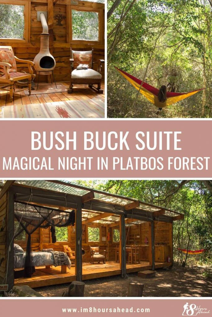 Sleeping in Bush Buck Suite in Platbos Forest, South Africa